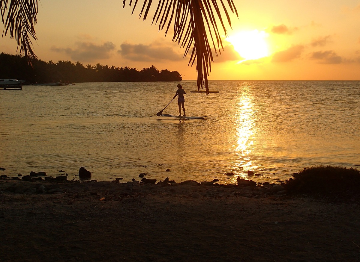 Paddleboarding at sunset just off our shore