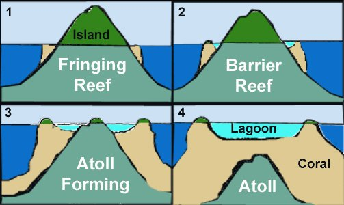 How does an atoll form?