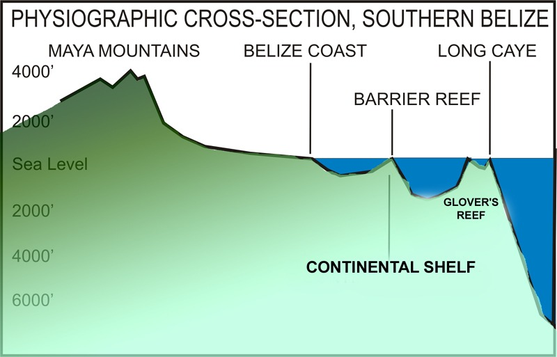 Underwater crosssection, Belize Barrier Reef and Glover's Reef Atoll