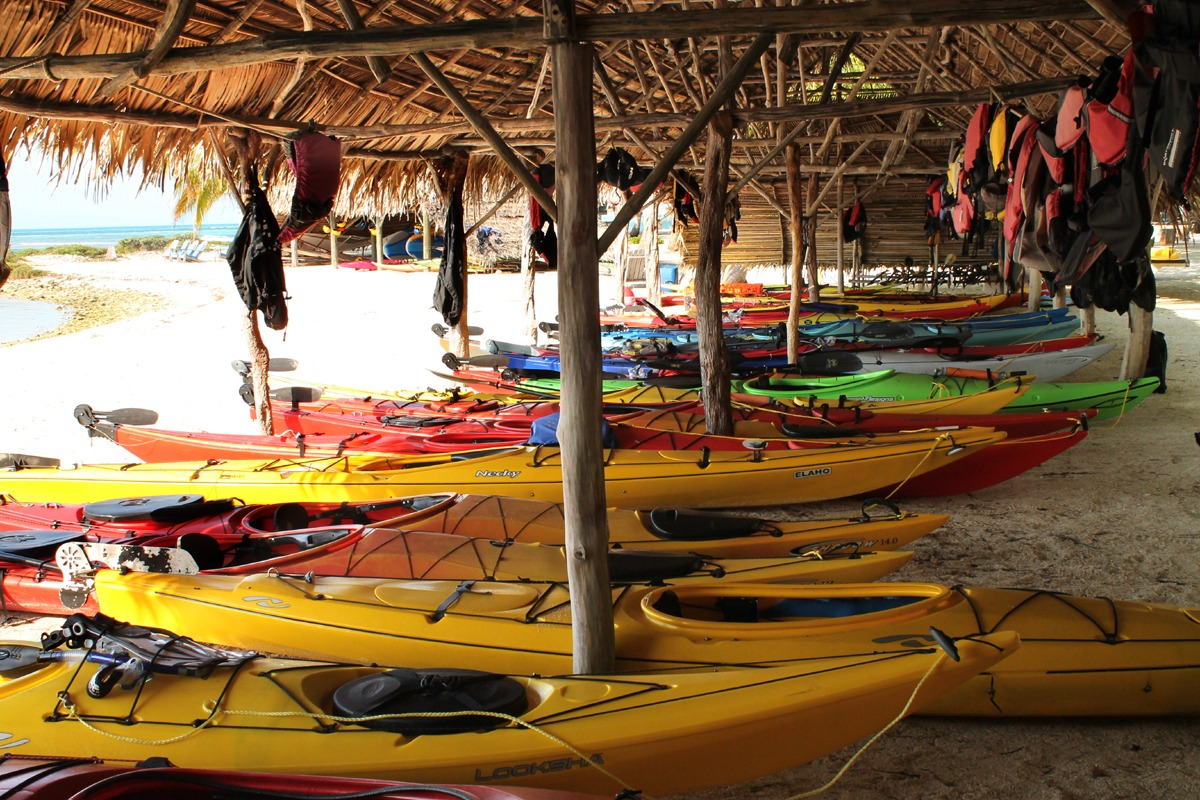 Our kayaks are just feet from shore, ready to go at anytime