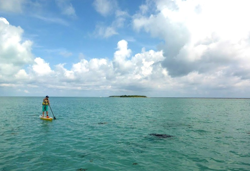 Paddle downwind to a nearby island, our boat brings you back!