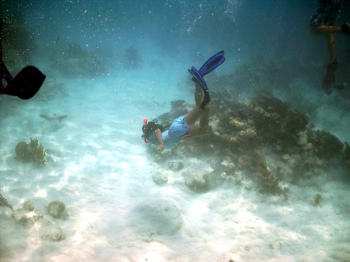 Free Diving near The Wall, Long Caye at Glover's Reef