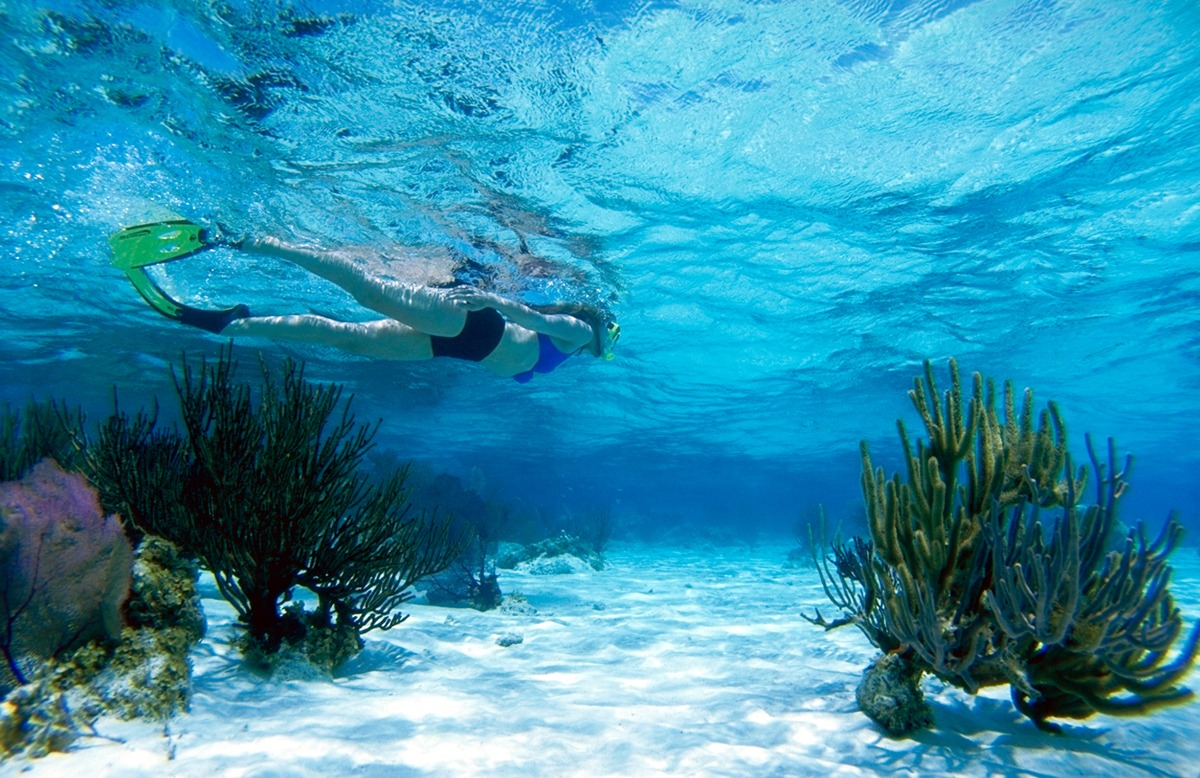 Snorkeling the reef environment of Glover's Atoll