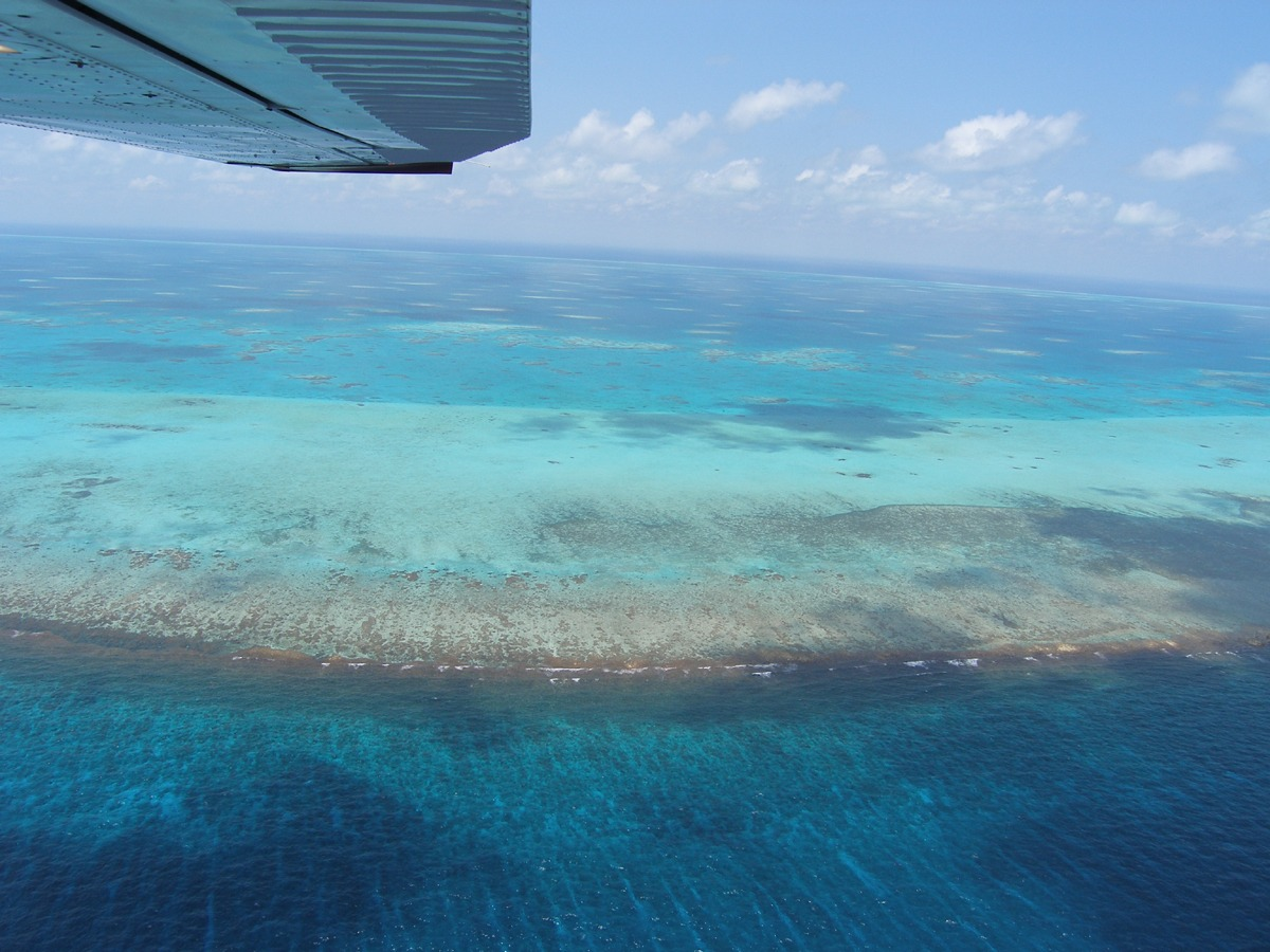 Glover's Reef from the air