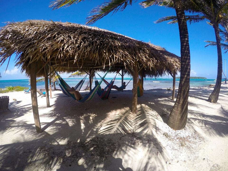 Long Caye hammock palapa