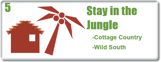 Stay in the jungle