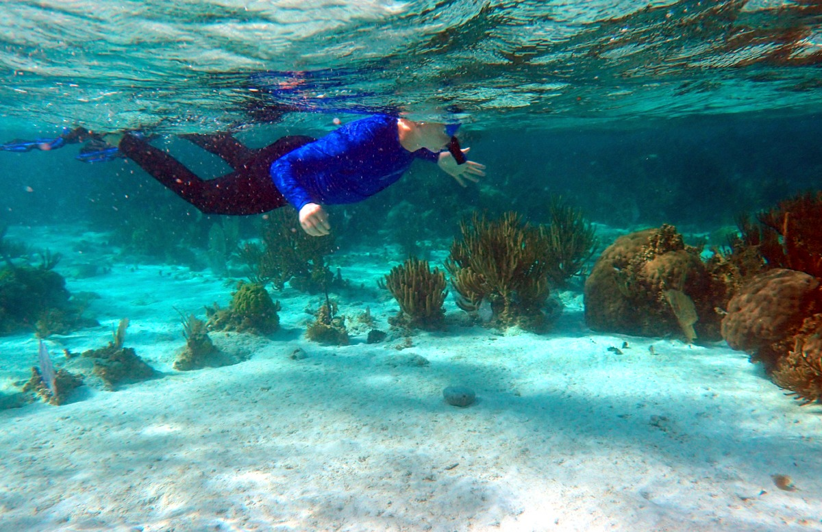 Snorkeling tours in Belize