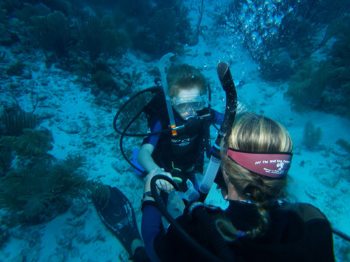 Kids dive course