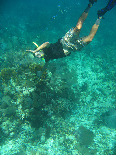 Belize Chosen As Top Ten Snorkeling Destination