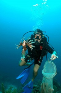 scuba diving work-vacation in belize