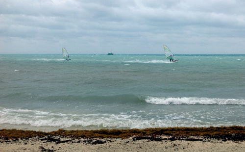 Belize windsurfing