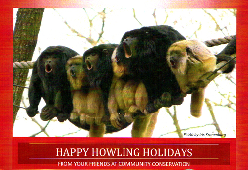 howler-monkey-preserve