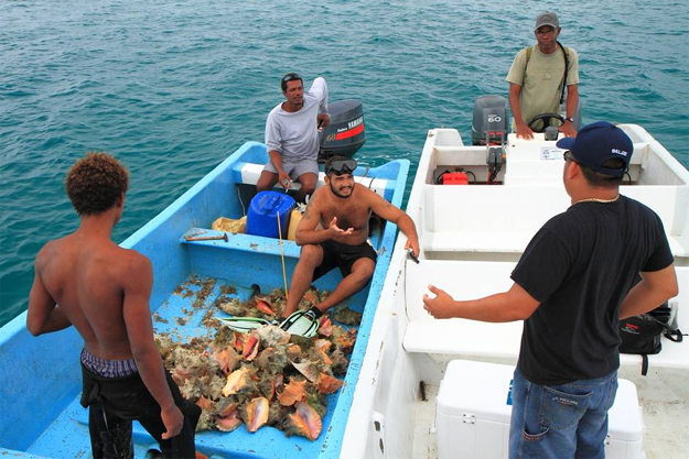 illegal fishing in Belize